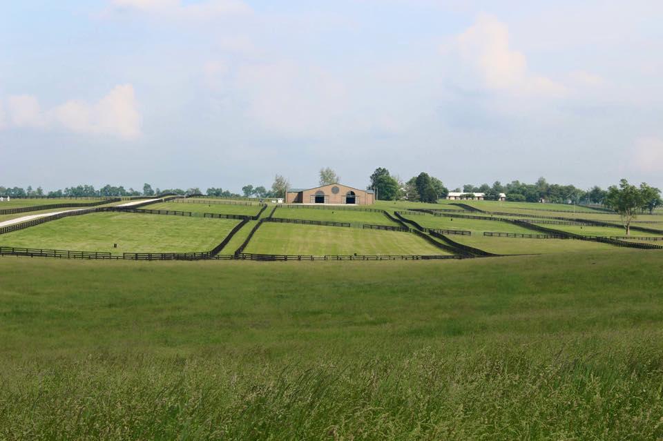 Six Winters Farm