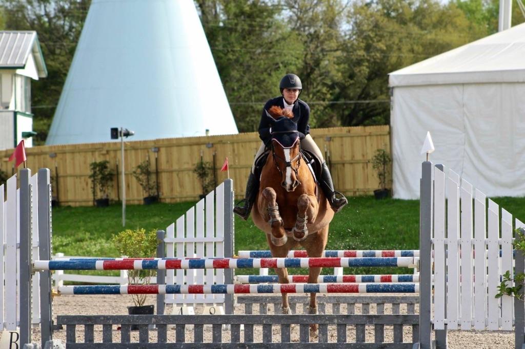 Six Winters Farm Equestrian Horse Training